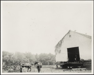 Ashdale Farm. Moving of barn, work horses on left.