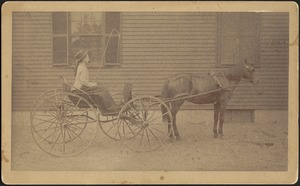 "Young woman in horse and buggy (possibly Mary ""Mollie"" Stevens)"