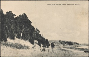 East side, Cedar Bank, Eastham, Mass.