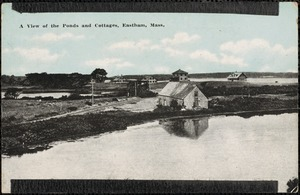 A view of the ponds and cottages, Eastham, Mass.