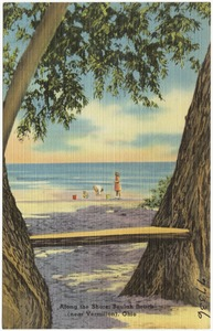 Along the Shore, Beulah Beach (near Vermilion), Ohio