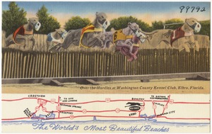 The world's most beautiful beaches. Over the hurdles at Washington County Kennel Club, Elbro, Florida
