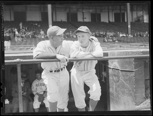 Bees players in dugout at Braves Field
