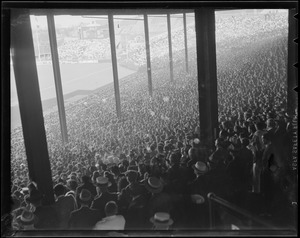 Braves Field crowd