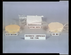 Dehydrated compressed food items