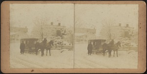 Driver and horse team with winter sleigh