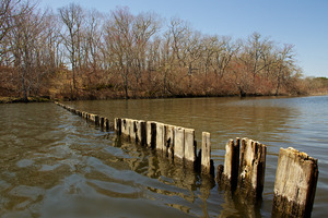 Edgartown Great Pond - - Wintucket Cove - Fence