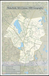 Census tract outline maps