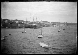 Sailboats and tall ships in a harbor