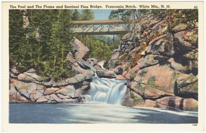 The Pool and the Flume and Sentinel Pine Bridge, Franconia Notch, White Mts., N.H.