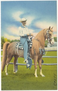 "A.H. Albee of Allen ""A"" Resort, on his Tennessee Walking Horse, Treasure Lynn Allen, Reg. 472187"