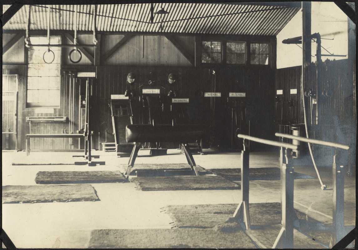 Armitage Gymnasium, The Royal Normal College for the Blind, England