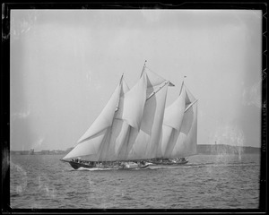 "The ""Baud"" and ""Bluenose"" fisherman's race"