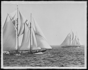 Fishing schooner's race off Gloucester