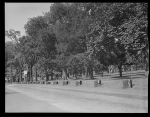 Fences, Boston Common comes down for war effort