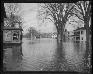 Flooded street (Fruit Street)