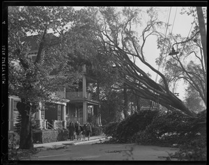 Tree falls on house, Hurricane of 38