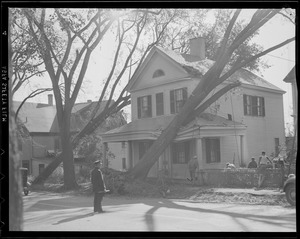 Trees crash into house, Hurricane of 38