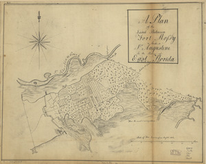 A plan of the land between Fort Mossy and St. Augustine in the province of East Florida