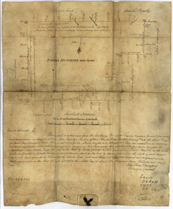 Thomas Hutchins' land grant and map to 2000 acres in West Florida