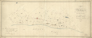 Map of part of the city of Washington shewing the situation of the mansion house, grave yard & buildings belonging to Mr. Notley Young