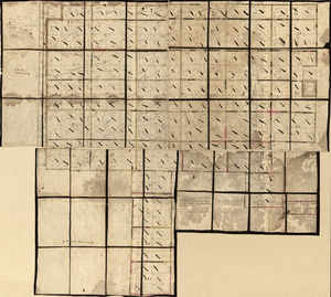 Land ownership map of the William Bingham estate in Potter County, Pennsylvania