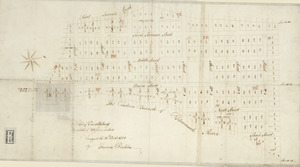 Plat of Carrollsburg