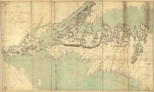 Plan of New York and Staten Islands with part of Long Island, survey'd in the years 1781, & 82