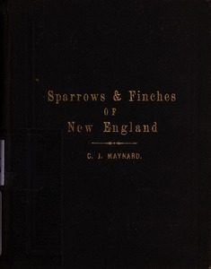 Sparrows, Finches, Etc. of New England