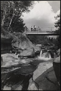 Fall of the Ammonoosuc River Near Mt. Washington Hotel
