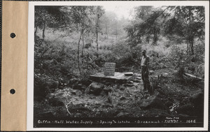 Giffin-Hall water supply, spring and intake, Greenwich, Mass., July 27, 1932