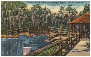 Boardwalk and bridge at Okefenokee Swamp Park, Waycross, Ga.