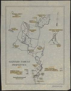 Harvard Forest Properties 1937