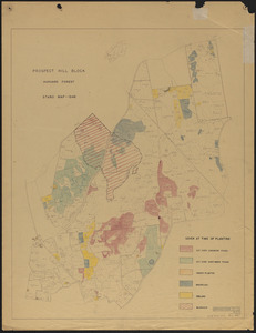 Prospect Hill Block Harvard Forest Stand Map 1946 Plantations - Cover at Time of Planting