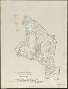 Topographic map of Meadow-water Tract (TS I-VII)