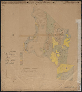 Meadow-Water Tract stand map of TS I-VI