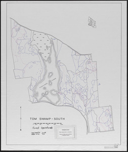 Tom Swamp South forest operations periods 2