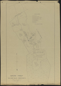 Tom Swamp IX stand map 1934 and experimental reproduction cutting operations