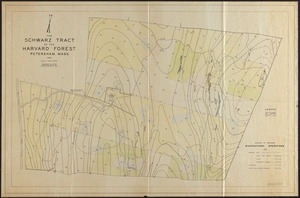 The Schwarz Tract - Silvaculture Operations 1938