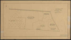 Higginson Tract 1911 Stand Map