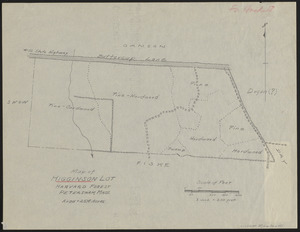 Higginson Lot 1937 Stand map