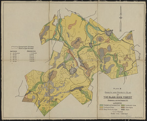 Growth and Density Plan of the Black Rock Forest