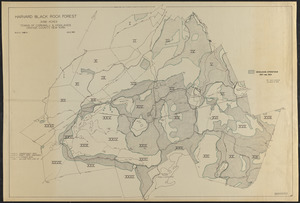 Harvard Black Rock Forest Woodlands Operations 1927-1984