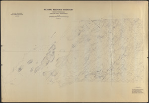 Composite of USGS Topographic Maps of Petersham ('Natural Resource Inventory')