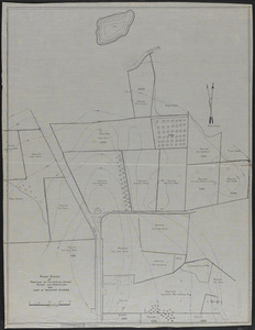 Rough Survey of Portions of Mr. William Simes, Marsh and Martin Lots and Land of Adjoining Owners