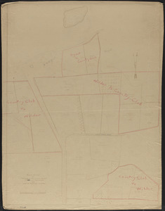 Rough Survey of Portions of Mr. William Simes Mann and Martin Lots and Land of Adjoining Owners