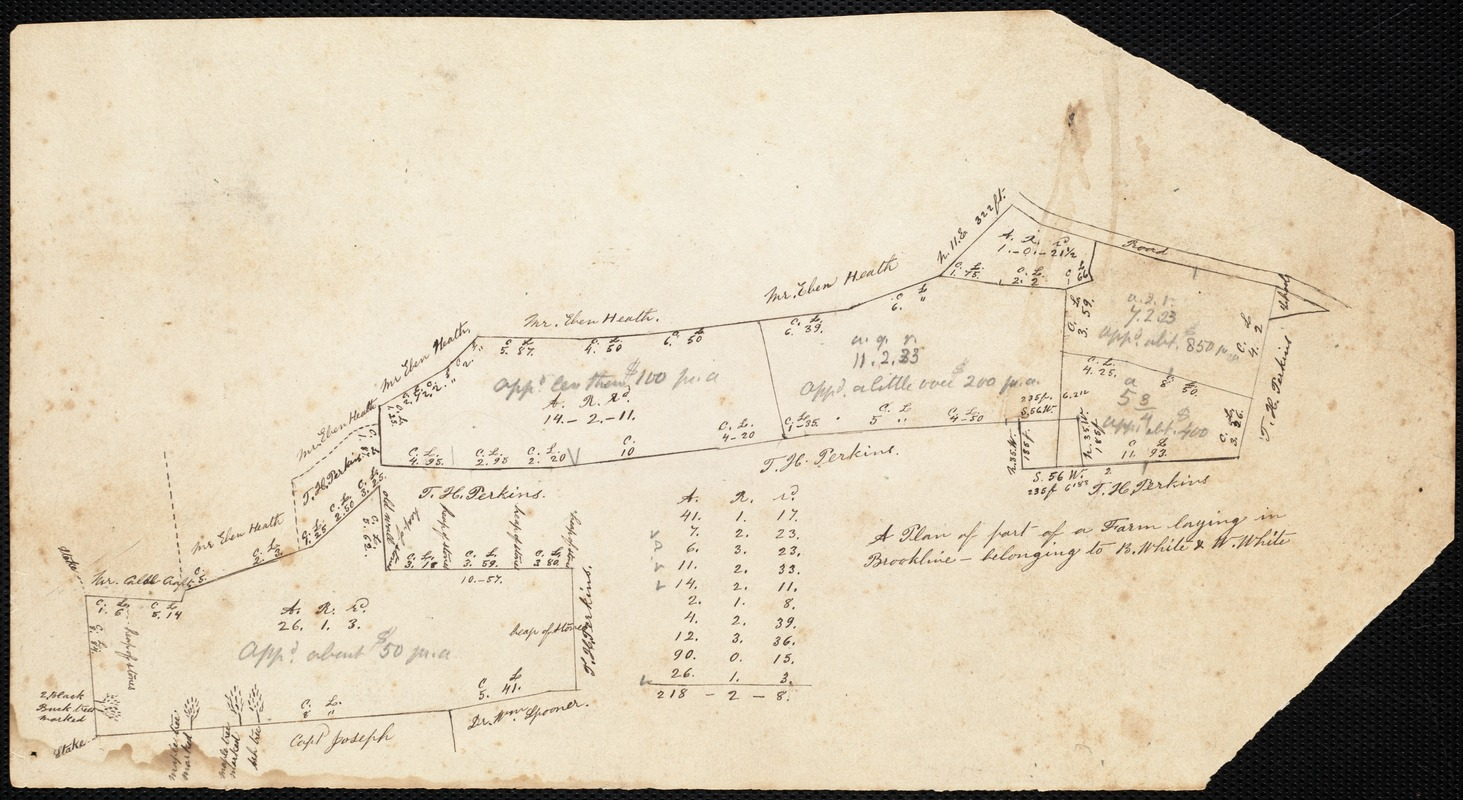 Plan of part of a farm lying in Brookline belonging to B. White and W. White