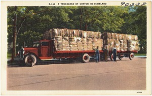 D-545. A truckload of cotton in Dixieland