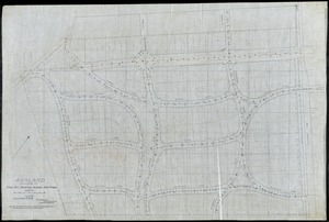"Ashland/ Lexington, KY./ Plan for Staking Roads & Trees[r]/; Scale 50'= 1"" [r]"