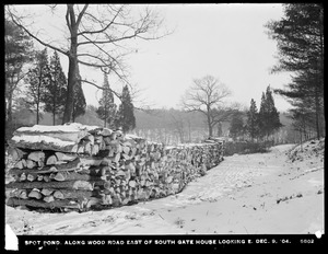 Distribution Department, Low Service Spot Pond Reservoir, along wood road east of Southern Gatehouse, looking easterly, Stoneham, Mass., Dec. 9, 1904